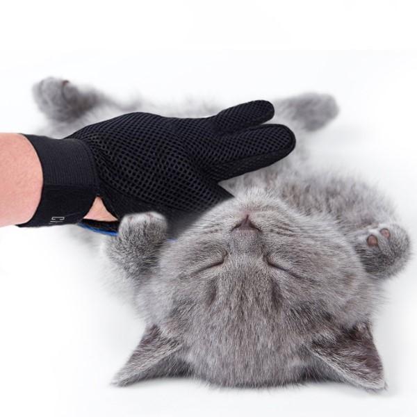 česanje mačke