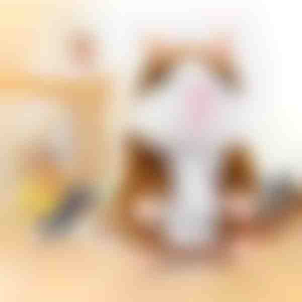 posnemanje otroških glasov govoreči hrček